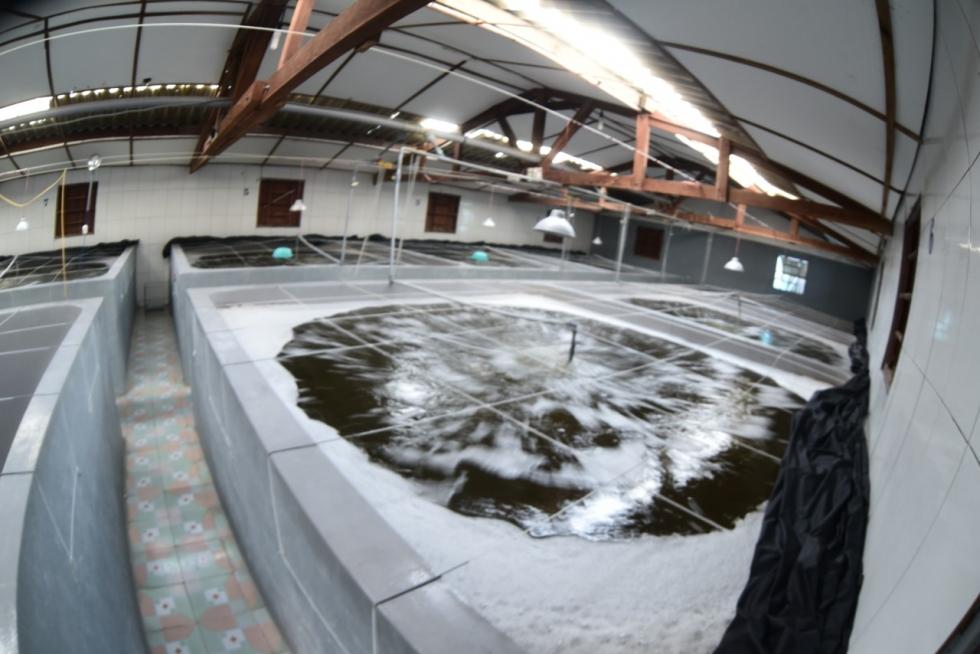 Cam đoan thiết bị lọc nước chính hãng, mang lại nguồn nước tinh khiết đạt quy định