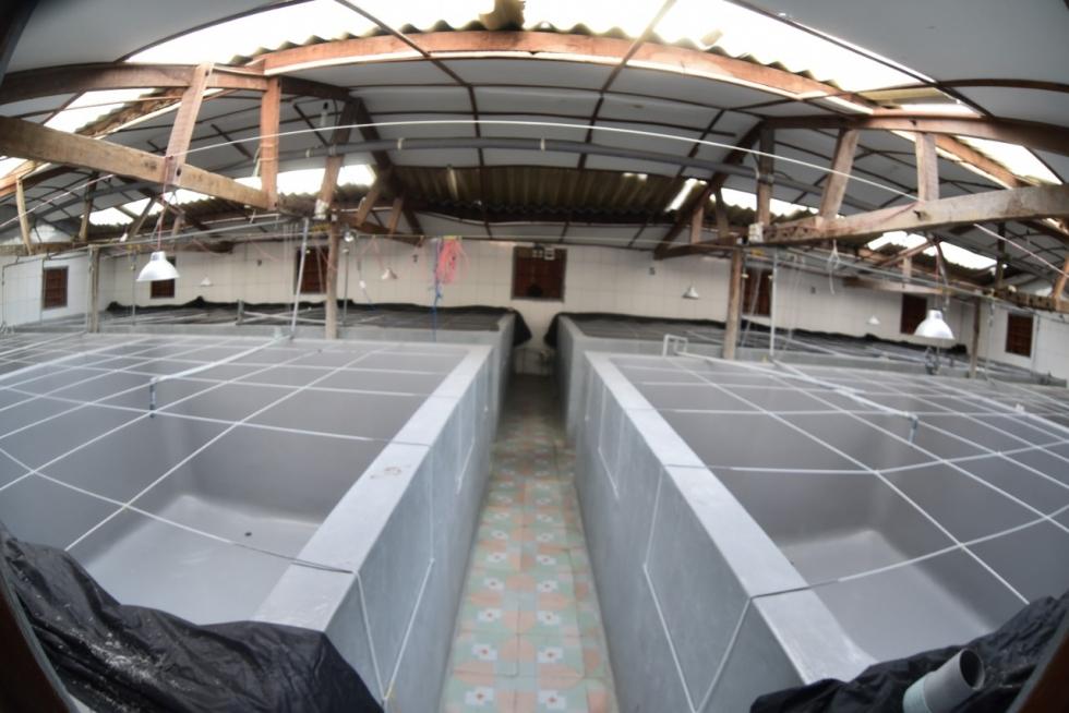 Tại khu vực Đà Nẵng chọn lắp đặt thiết bị lọc nước công nghiệp của cửa hàng nào giá rẻ?